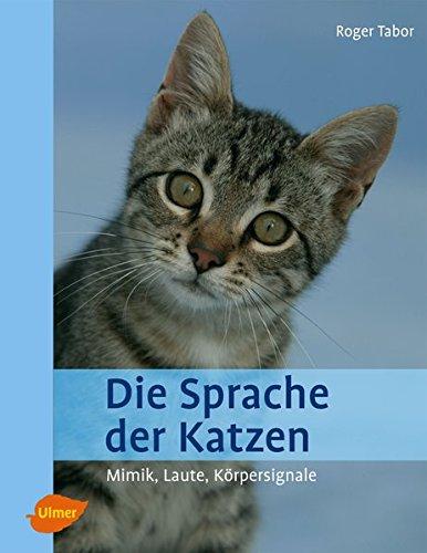 Die Sprache der Katzen: Mimik, Laute, Körpersignale
