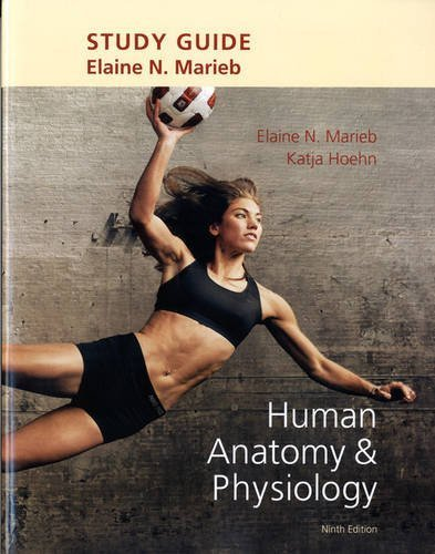 Study Guide for Human Anatomy & Physiology 9th by Marieb, Elaine N., Hoehn, Katja (2012) Paperback