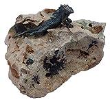 Patric Rottenecker Bronzefigur, Gecko mini aus Bronze montiert auf Flusskiesel, bronzefarben, 9 x 13 x 9 cm, 991275