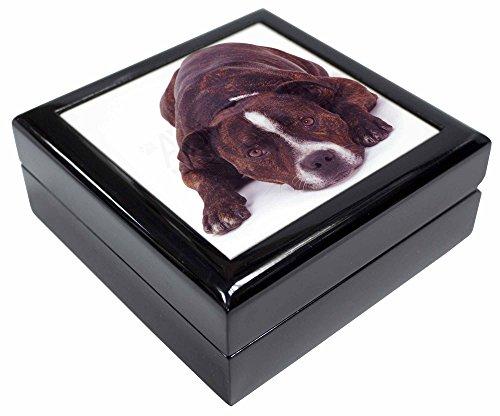 Advanta - Jewellery Boxes Staffordshire Bull Terrier Hund Andenken/Schmuck Box Weihnachten Geschenk (Hund Schmuck Bull Terrier)