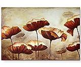 Paul Sinus Art Leinwandbilder | Bilder Leinwand 120x80cm Gemälde Mohnblumen