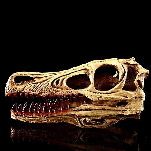 XIEJI Schnelle Wasserhahn Knochen Dragon Schädel Dinosaurier Schädel Fossil Gefälschte Knochen Modell Harz Handwerk Halloween Dekor Dekoration,1piece
