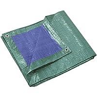 Telone di protezione rinforzati 140 gr/m² 5x8 m