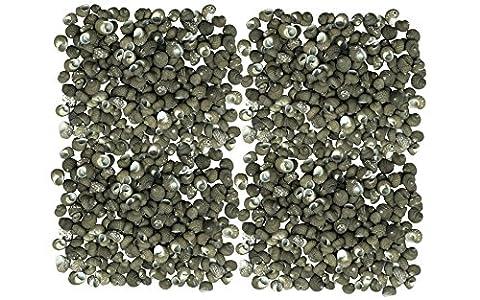 Muscheln ausgewählte Qualität - ca. 350 Stück Muscheln - sulcate planaxis/planaxis Furchenschwimmer Muscheln für Seemuschel Vasen, Muschel Boxen, Muschel Rahmen, Seemuschel Schmuckherstellung & Mini Garten Miniatur
