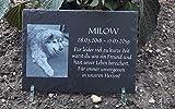 Tier-Gedenktafel Schiefer, drei Größen - Andenken an Hund, Katze, Pferd und andere Haustiere oder Personen, Größe:22 x 16 cm