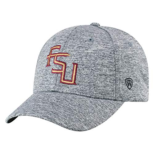 Top of the World NCAA Florida State Seminoles Men's Adjustable Steam Charcoal Icon Hat, Grey (Hat Seminoles Florida State)