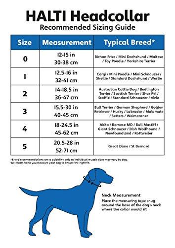 Halti Hundehalfter in Größe 3 (rot) - 3