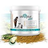 Ida Plus - Grünlippmuschelpulver (100 g) - Ohne Zusätze - Für Gelenke bei Hunden, Katzen und Pferden - Versorgung des Bewegungsapparates mit Glykosaminoglykanen (Gag)