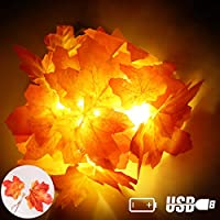 XIYUNTE String Lights Artificial Maple Leaf - 5FT/10LED Fairy Lights Home Décor Autumn Garland Maple Leave String Light, USB & 3*AA Battery Powered,String Light Fall Decoration for Garden,Christmas
