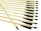 Arrowforge - 12 Stück Traditionelle Pfeile Holzpfeile 4 Shield Cut Naturfedern