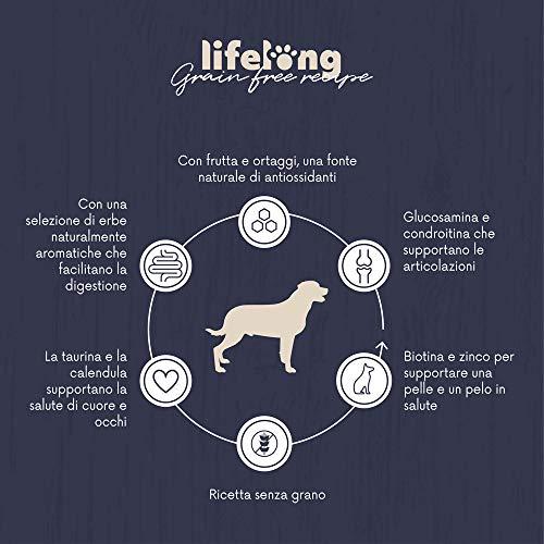 Marchio Amazon - Lifelong Alimento completo per cani adulti, Salmone fresco - 5 kg * 2