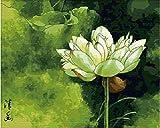 Diseño de flores de loto-DIY de silencio de la pintura de arte de pintura trabaja de pintar por números de 16 x 50.8 cm sin marco
