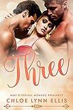 Three: MMF Bisexual Menage Romance (English Edition)