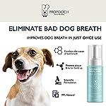 Pro Pooch Dog Breath Freshener - Combat Bad Breath, Tartar & Plaque Build Up w/Dog Mouthwash - Fresh Breath & Safe Oral… 15