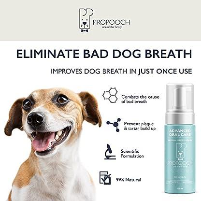 Pro Pooch Dog Breath Freshener - Combat Bad Breath, Tartar & Plaque Build Up w/Dog Mouthwash - Fresh Breath & Safe Oral… 6