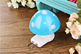 #6: SNOWBIRD Energy Saving Sensor Technology Creative Mushroom Shaped Energy Saving Design LED Night Light Lamp Automatic Sensor for Kids Bedroom Indoor lighting- ASSORTED COLORS (BLUE)