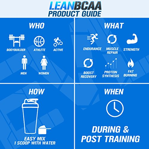 51fWjjBfGjL. SS500  - Evlution Nutrition LeanBCAA, BCAA's, CLA and L-Carnitine, Stimulant-Free, Recover and Burn Fat, Sugar and Gluten Free…