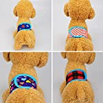 WFZ17 Male Pet Dog Nappy Band Soft Clean Sanitary Pants Training Toilet Belly Strap Diapers