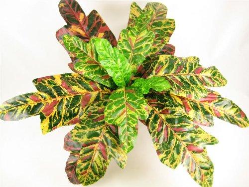 40cm farbige Künstliche Seide crotons Pflanze