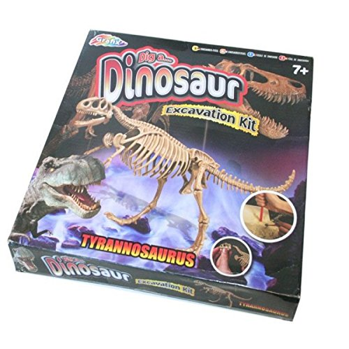 Large Dinosaur Excavation Kit - Dig Out Bones And Create A Dino Toy Model by A TO Z