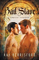 Bad Slave by Kay Berrisford (2014-12-22)