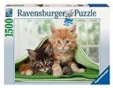 Ravensburger 16388 sotto Le Coperte Puzzle 1500 Pezzi