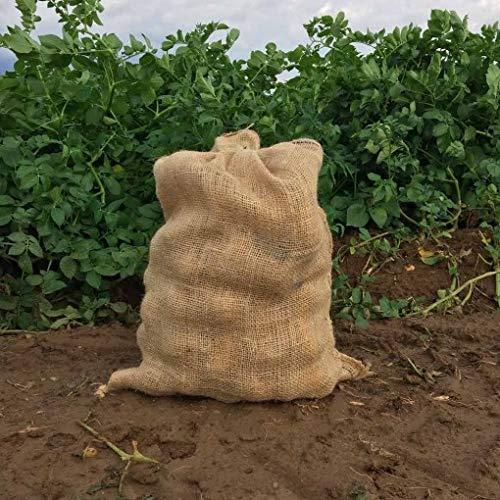Kartoffeln / Tasche