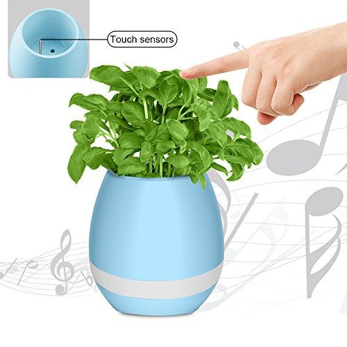 Blumentopf mit Musik und Beleuchtung, drahtloser Bluetooth Lautsprecher mit buntem LED Nachtlicht, Klavierspielen auf einer echten Pflanze!!!, wiederaufladbar per USB