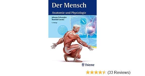 Charmant Anatomie Und Physiologie Fragen Zeitgenössisch - Anatomie ...