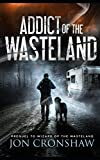 Addict of the Wasteland: Prequel to Wizard of the Wasteland