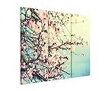 3 teiliges Leinwand-Bild 3x90x40cm (Gesamt 130x90cm) Naturfotografie – Rosa Kirschblüten auf Leinwand exklusives Wandbild moderne Fotografie für ihre Wand in vielen Größen