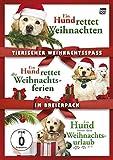 Tierischer Weihnachtsspaß Ein Hund kostenlos online stream