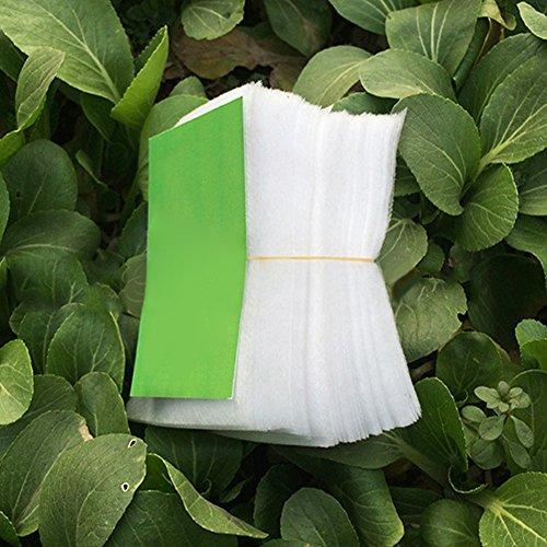 Lot de 100 sacs de semis en tissu biodégradable pour plantes (8 x 10 cm/14 x 16 cm/20 x 22 cm) 20 * 22cm blanc