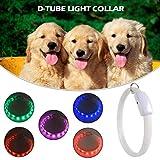 ramonde LED-Hundesicherheitshalsband - USB-wiederaufladbar - Haustier-Hundehalsband/blinkendes Hundehalsband - Verbesserte Sichtbarkeit und Sicherheit des Hundes