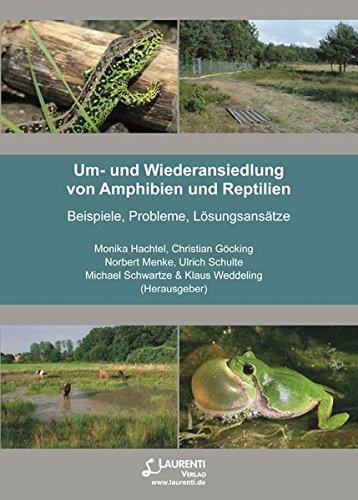 Um- und Wiederansiedlung von Amphibien und Reptilien: Beispiele, Probleme, Lösungsansätze (Supplemente der Zeitschrift für Feldherpetologie)
