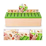 DecentGadget Wooden Classification Box with Cover 80 objects from 8 Categories To Exercise Kids