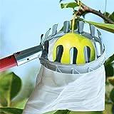 Cesto per la raccolta della frutta, Tech per l'organizzazione della casa Utile raccoglitore di frutta Palo con cestello per la testa, Raccoglitore di frutta per raccolta Raccolta Giardinaggio Mela