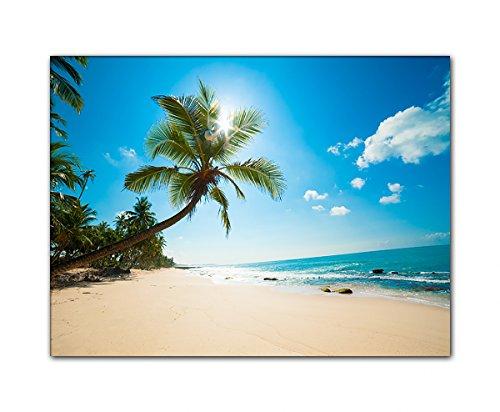 DEINEBILDER24 - Wandbild XXL Palme und einfallende Sonne am Strand, Sri Lanka 60 x 80 cm auf Leinwand und Keilrahmen. Beste Qualität, handgefertigt in Deutschland!