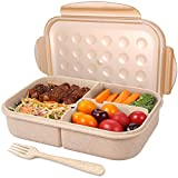 Best Bento Lunch Boxes - Bento Box for Adults Lunch Containers for Kids Review