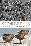 Shorebirds of the Northern Hemisphere.