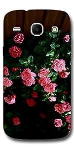 SEI HEI KI Designer Back Cover For Samsung Galaxy Core I8262 - Multicolor