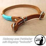 Hunde-Halsband Zugstop Fettleder
