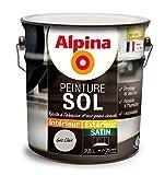 ALPINA Peinture Sol - Satin Gris Clair 2,5L 25m²