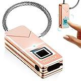 Yahe Cadenas de sécurité portable sans mot de passe Lecteur d'empreintes digitales, Or rose
