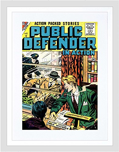 COMIC BOOK COVER PUBLIC DEFENDER ACTION CRIME MANNING POLICE ART PRINT B12X6670 (Manning Cover)