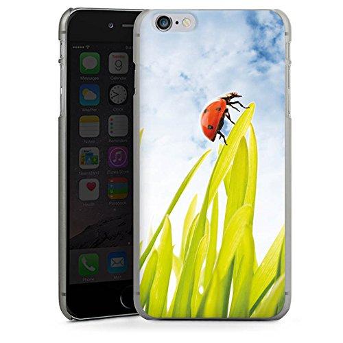 Apple iPhone X Silikon Hülle Case Schutzhülle Grashalm Marienkäfer Himmel Hard Case anthrazit-klar