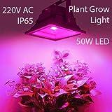 50Watt IP65 LED Full Spectrum Light for Indoor Plants Gardening Hydroponics Greenhouse Farming