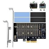 6amLifestyle M2 Adapter per NVME PCIe E SATA SSD con Alluminio Dissipatore di Calore Supporto PCIe x4 x8 x16 Slot Adatta M.2 PCIe Nvme M Key + SATA B Key SSD 2230 2242 2260 2260 2280
