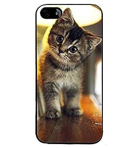 Printvisa Kitten On A Shelf Back Case Cover for Apple iPhone 5