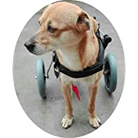 Ajustable para silla de ruedas para perro (S), peso 20 A 40 kg